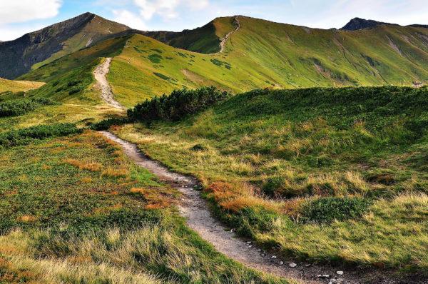 Poprawi się dostępność szlaków w polskich parkach narodowych i krajobrazowych