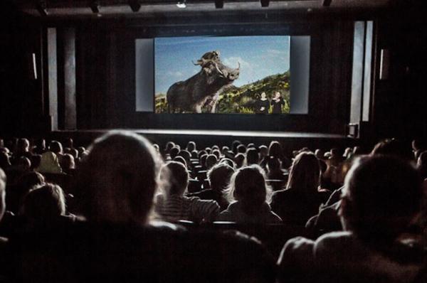 Wraca temat przystosowania kin do potrzeb osób niepełnosprawnych